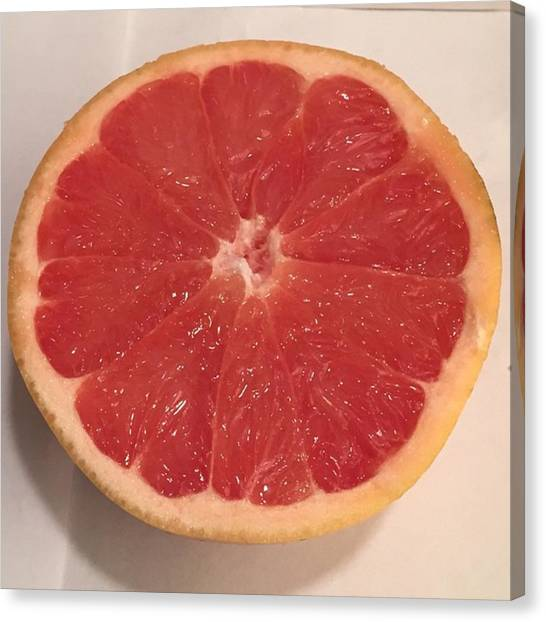 Grapefruits Canvas Print - A Perfect Looking Grapefruit by Stephanie Ventura