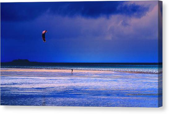 If I Had Wings Canvas Print by Holly Kempe