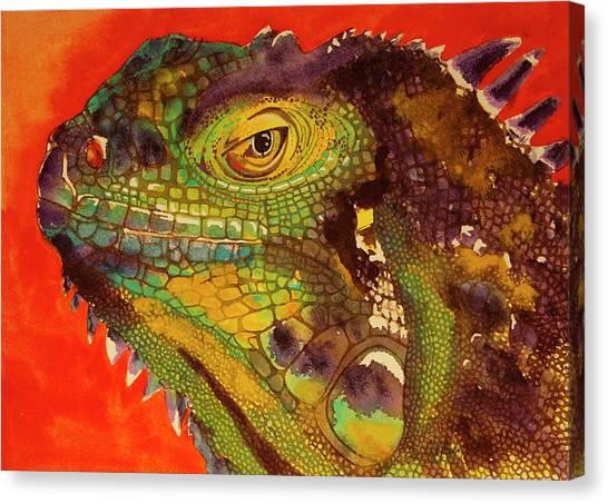 Iggy Canvas Print