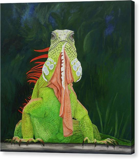 Iguana Dude Canvas Print