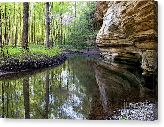 Illinois Canyon In Springstarved Rock State Park Canvas Print