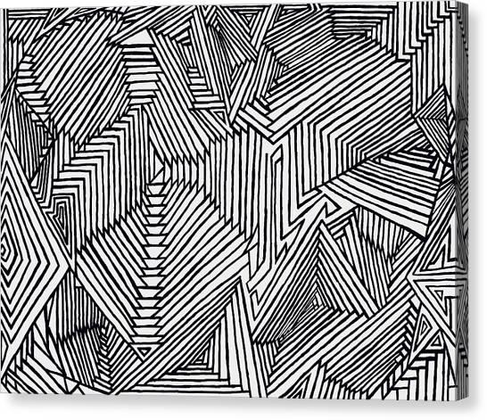 Illusions New Canvas Print
