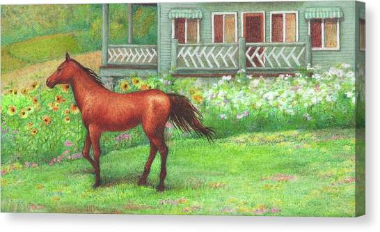 Canvas Print featuring the painting Illustrated Horse Summer Garden by Judith Cheng
