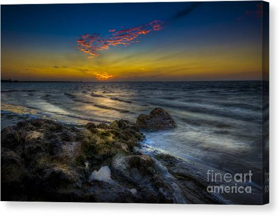 Tampa Bay Rays Canvas Print - I'm Listening  by Marvin Spates