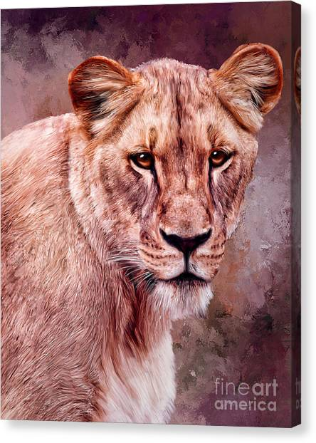 I'm Not Lion  Canvas Print