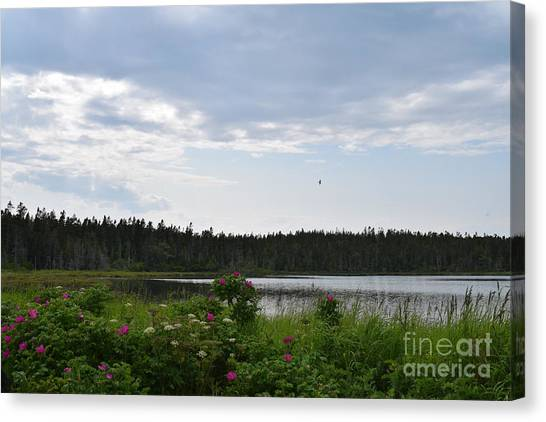 Images From Maine 2 Canvas Print