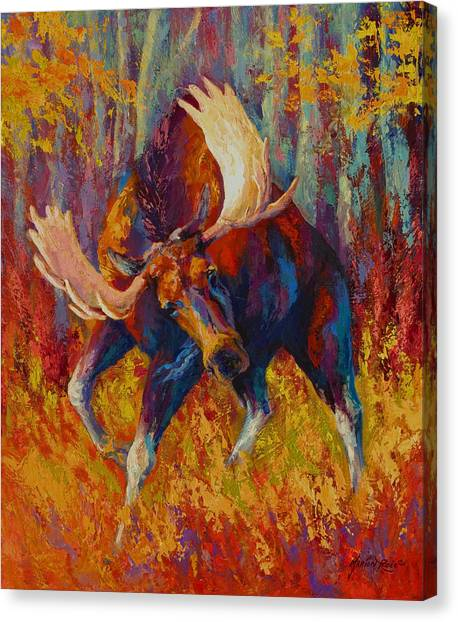 Moose Canvas Print - Imminent Charge - Bull Moose by Marion Rose