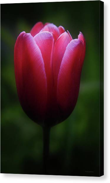 Imperfect Perfection Canvas Print