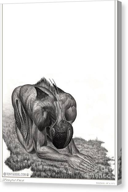 Impetus Graphite Canvas Print
