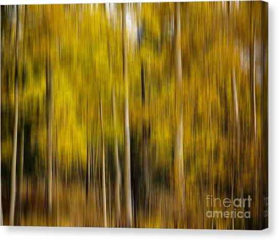 Impression Of Autumn Canvas Print
