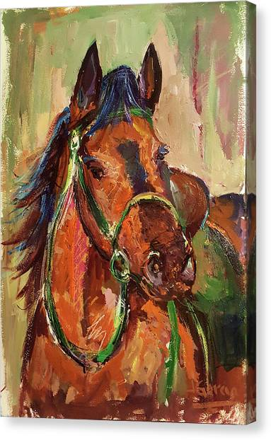 Impressionist Horse Canvas Print