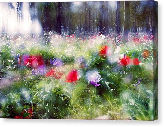 Impressionistic Photography At Meggido 2 Canvas Print