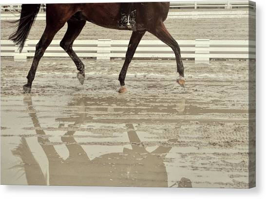 Impulsion Mirrored Canvas Print by JAMART Photography