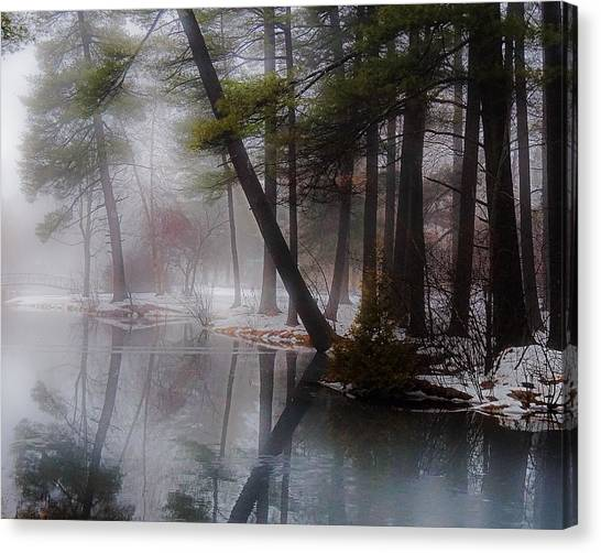 In A Fog Canvas Print