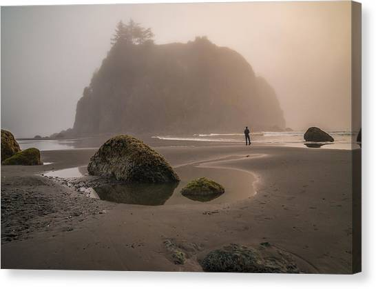 Olympic National Park Canvas Print - In A Fog by Kristopher Schoenleber