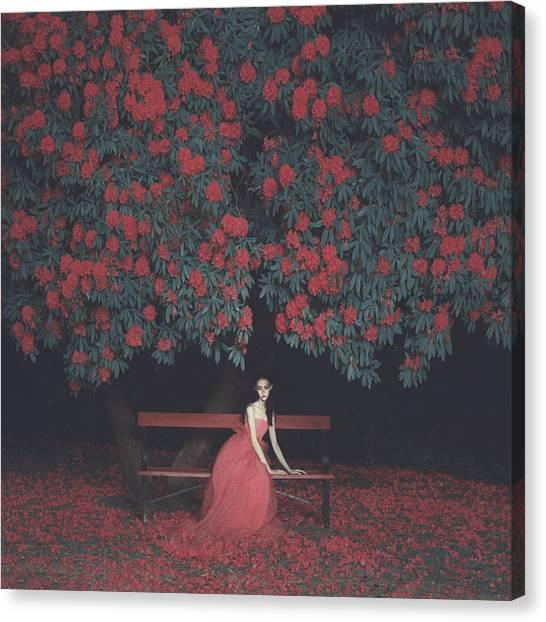 Blossom Canvas Print - In A Garden by Anka Zhuravleva