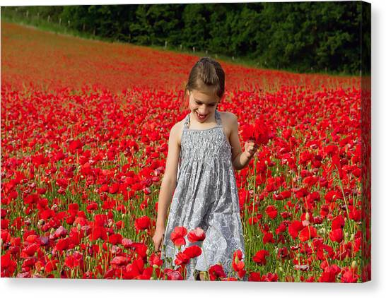 In A Sea Of Poppies Canvas Print