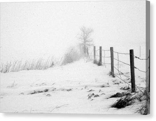 In Defense Of Snow Canvas Print by Julie Lueders