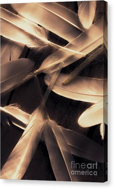 Connect Canvas Print - In Delicate Forms by Jorgo Photography - Wall Art Gallery