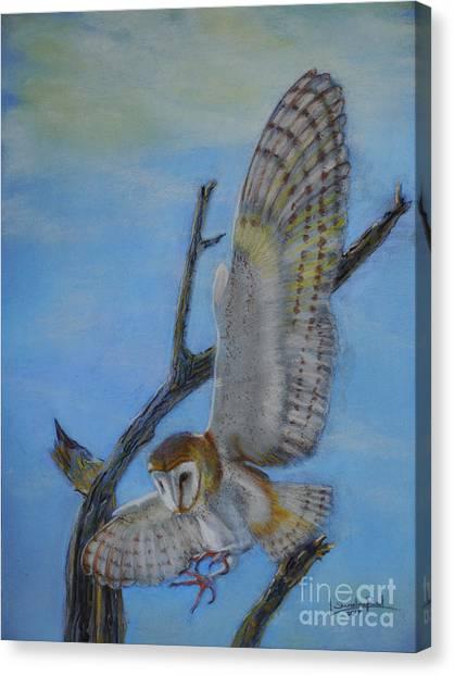 In Flight Barn Owl Canvas Print