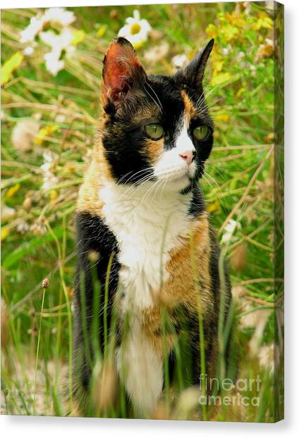 In Her Element Canvas Print
