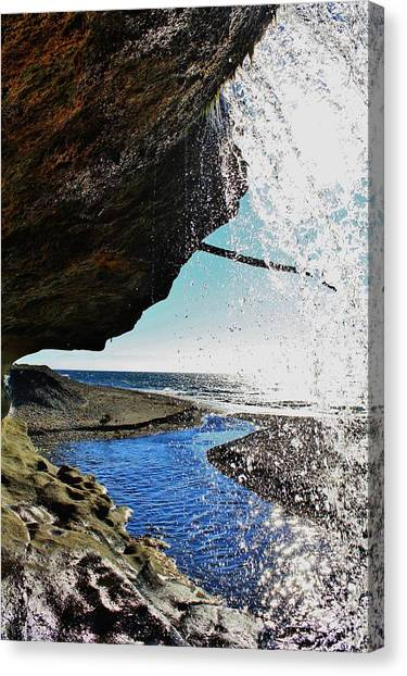 Vancouver Island Canvas Print - In Nature by Victoria Clark