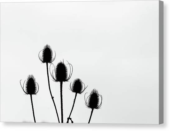 In Order Canvas Print