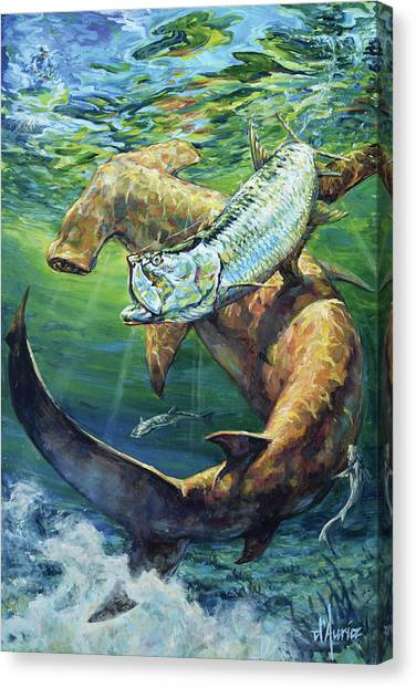 Spearfishing Canvas Print - In Pursuit by Tom Dauria