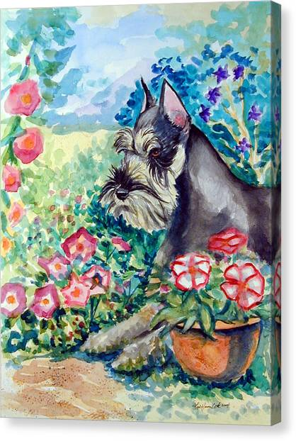 Schnauzers Canvas Print - In The Garden - Schnauzer by Lyn Cook