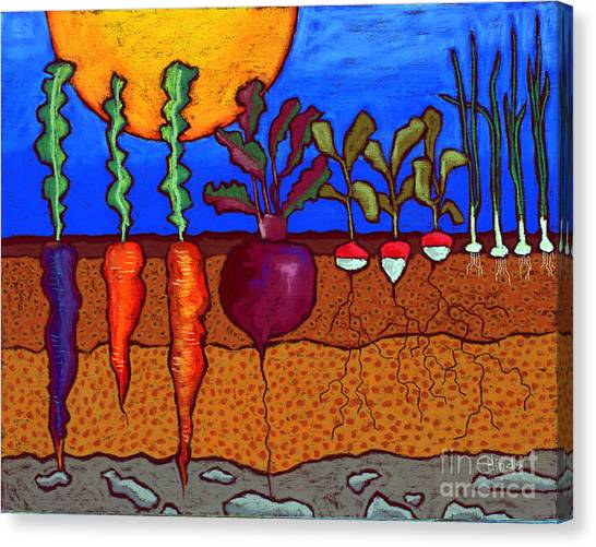 Vegetable Garden Canvas Print - In The Ground by David Hinds
