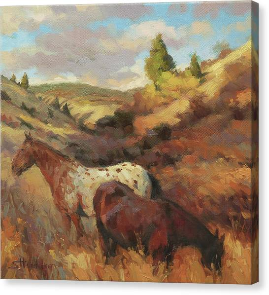 Horse Farms Canvas Print - In The Hollow by Steve Henderson