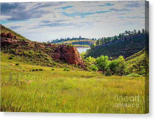 Colorado State University Canvas Print - In The Meadow by Jon Burch Photography