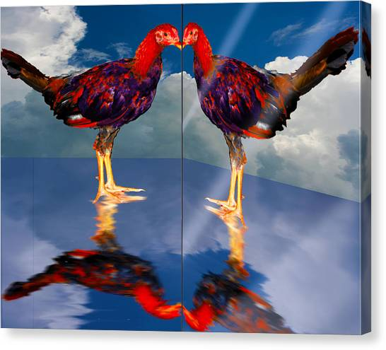 In The Mirror Canvas Print by John Breen