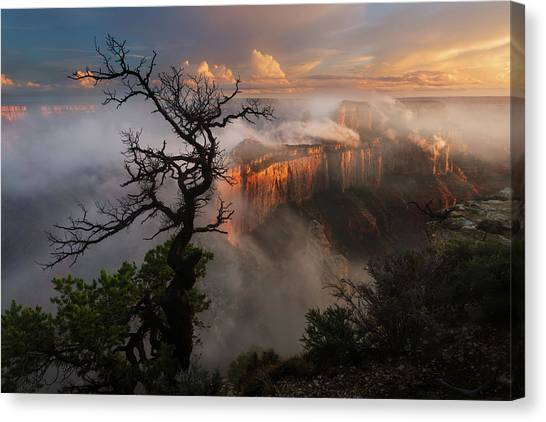 In The Mist Canvas Print by Adam Schallau