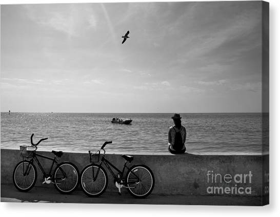 In The Moment Canvas Print by Ray Medina