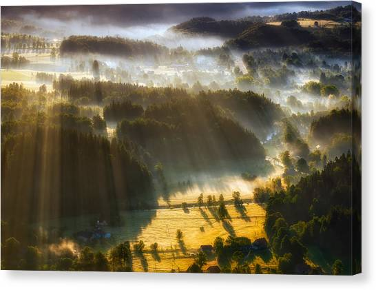 Foggy Forests Canvas Print - In The Morning Mists by Piotr Krol (bax)