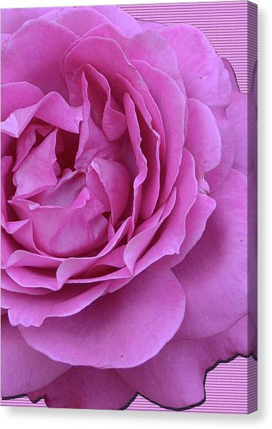 In The Pink Canvas Print by Larry Bishop