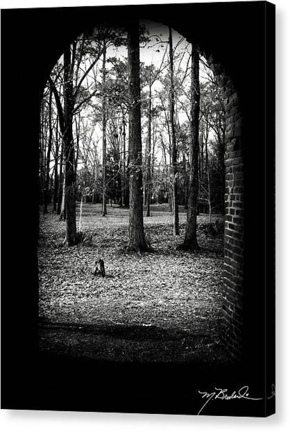 In The Shadows Canvas Print by Melissa Wyatt
