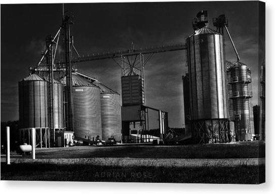 In The Still- Black And White Canvas Print