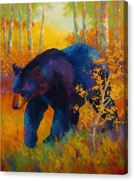 Spirit Canvas Print - In To Spring - Black Bear by Marion Rose