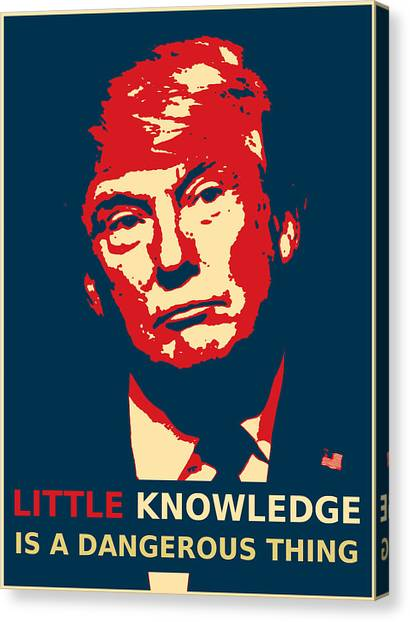 Donald Trump Canvas Print - indefinite ARTicle by Richard Reeve