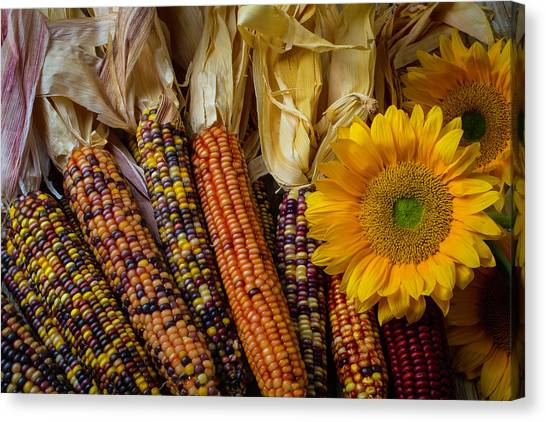 Indian Corn Canvas Print - Indian Corn And Sunflowers by Garry Gay