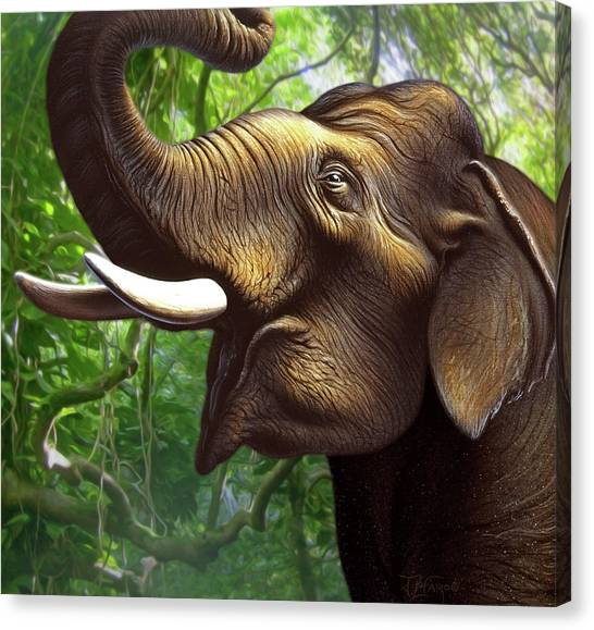 Ivory Canvas Print - Indian Elephant 1 by Jerry LoFaro