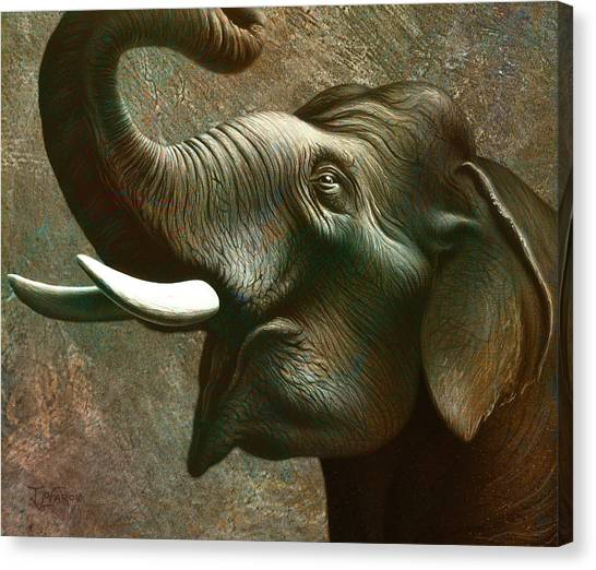 Ears Canvas Print - Indian Elephant 2 by Jerry LoFaro