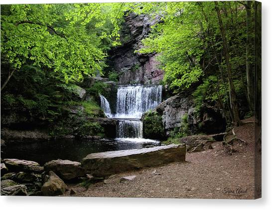 Indian Ladder Falls Canvas Print
