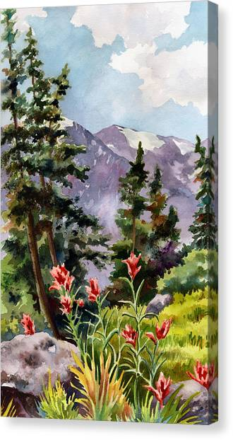 Pine Trees Canvas Print - Indian Paintbrush by Anne Gifford