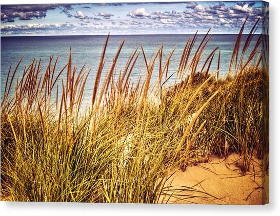 Indiana Dunes National Lakeshore Canvas Print
