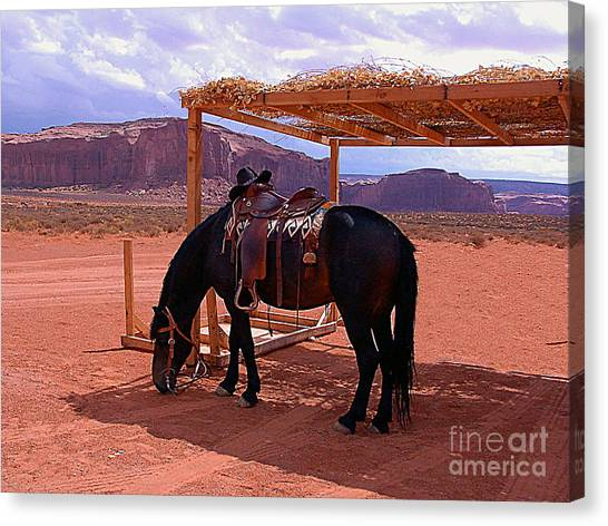 Indian's Pony In Monument Valley Arizona Canvas Print
