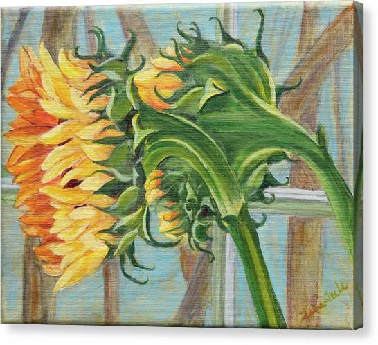 Indoor Sunflowers Canvas Print