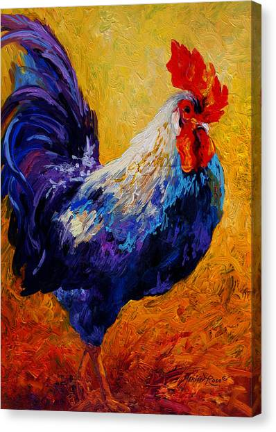 Country Canvas Print - Indy - Rooster by Marion Rose